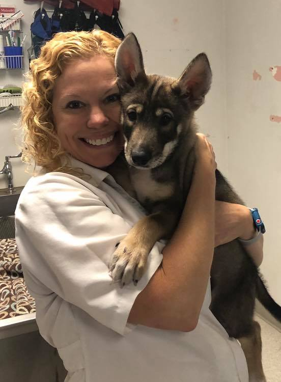 veternarian-dr-scott-with-adorable-puppy-stringtown-animal-hospital